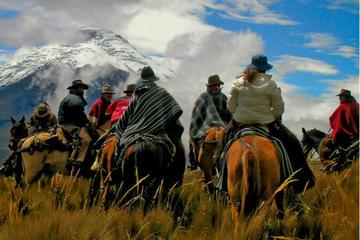 Passeio a cavalo de dia inteiro em Mendoza