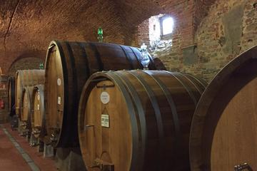 Private Tour: MONTEPULCIANO Wine Tasting Experience