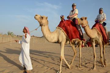 Safári matutino com passeio de camelo...