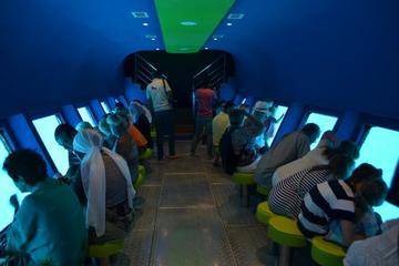Happy Dolphin Glass Boat Submarine