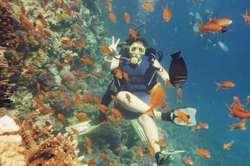 Viagem com mergulho em Hurghada com 2...