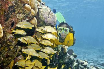 Mergulho com snorkel Extremo saindo de Riviera Maya