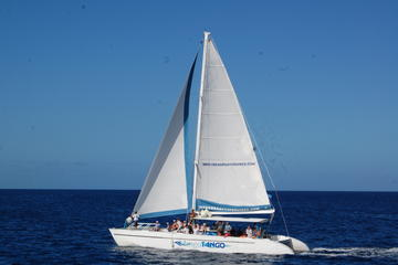 Private Sunset Catamaran Cruise from...