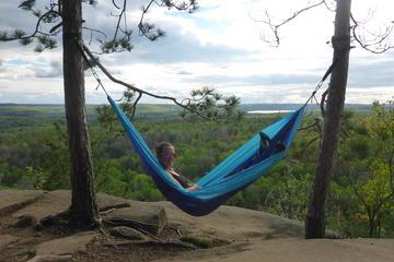 Algonquin Provincial Park Day Tour fra...