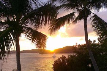Harbor Lights Dinner Cruise from St...