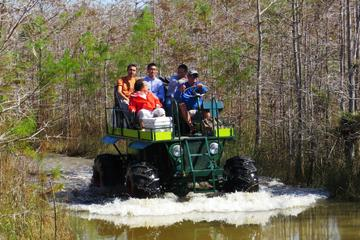 Day Trip Private Buggy and Walking Tour Through the Everglades near Ochopee, Florida