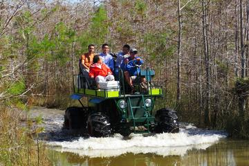 Private Buggy-Tour und Spaziergang in...