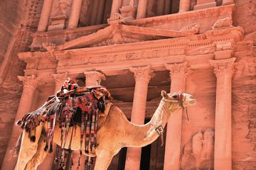 Private Petra One Day Tour From Aqaba ...