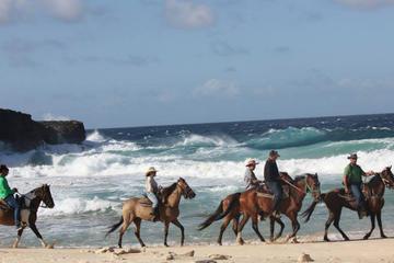 Excursión por la costa de Aruba: excursión a caballo y balo en la...