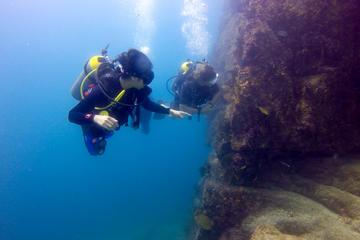 Curso de referência para mergulhadores em água aberta em Los Cabos