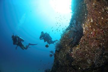 Descubra a Experiência de mergulho...