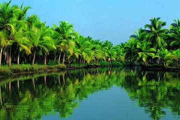 Costa Venezia Kochi Shore Excursion:Backwater Houseboat and Fort Kochi