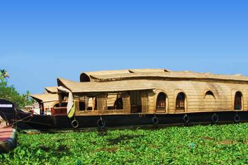 Kochi Shore Excursion: Private Day...