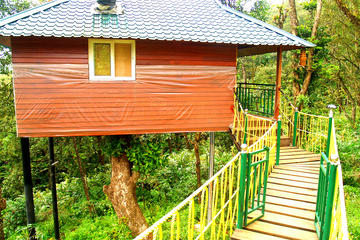 Munnar Tree House & Aleppey Boat ...