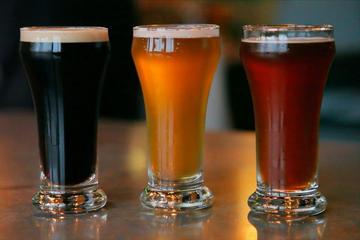 Excursão de bicicleta com vinhos e cerveja artesanal em Flagstaff