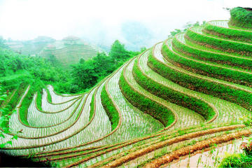 Guilin Private Tour: Longji Rice...