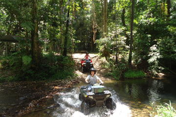 Half-Day ATV 4-Wheel Buggy Rainforest Day Trip from Cairns