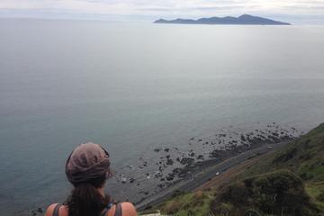 Paekakariki Escarpment Track