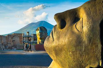 Pompei, Ercolano e tour della cantina