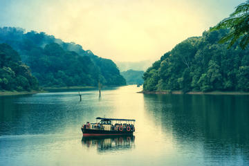 5 días en Kerala desde Kochi