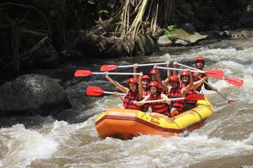 Bali River Rafting with Buffet Lunch and Transfers