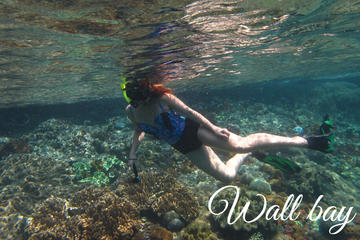 Full-Day Bali Nusa Penida Snorkeling Trip with Lunch and Hotel Transfers
