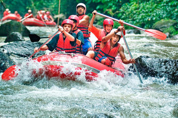 Half-Day White River Rafting from...