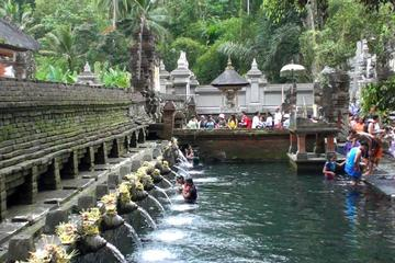 Private Balinese Traditional Tour with House Tour & Ubud Monkey Forest