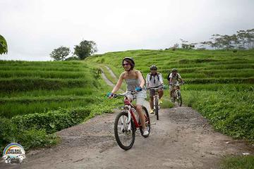 Village Cycling Tour in Bali Including Transfers and Lunch