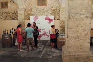 Excursión a una bodega en Mallorca y...