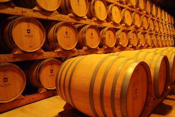 Palma de Mallorca Landausflug: Weingut Besuch und Weinprobe Tour