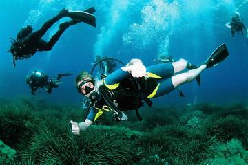 Batismo por mergulho com scuba em...