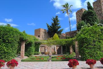 Privat rundtur i Malaga med bland ...