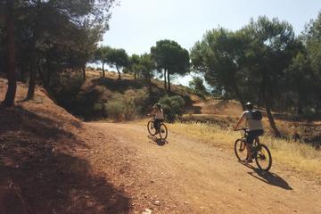 Excursión en bicicleta eléctrica por la campiña de la Alhambra de...