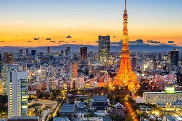 Private Minibus Transfer - Tokyo (NRT) - Tokyo City Centre (3-7...