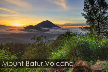 Bali Ubud y Volcano Day Tours