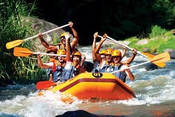 Combinação de Bali Rafting incluindo...