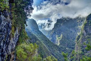 Caminhada em Levadas de Caldeirão Verde em Madeira