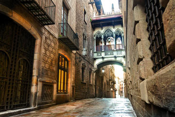 Picasso Museum and Gothic Quarter...