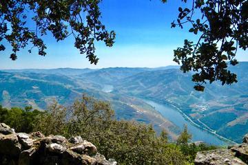 Vale do Douro - Experiências Senses