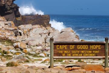 Excursão diurna particular pela Península do Cabo