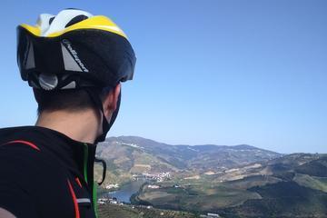 Excursión en bicicleta de 7 días por los vinos del Duero, moderada