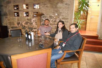 Recorrido en bicicleta de la gastronomía y el vino de Oporto