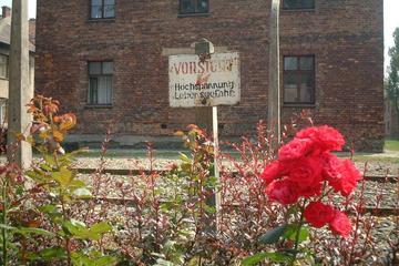 Auschwitz-Birkenau-Tour ab Krakau und Klezmerkonzert am Abend mit...