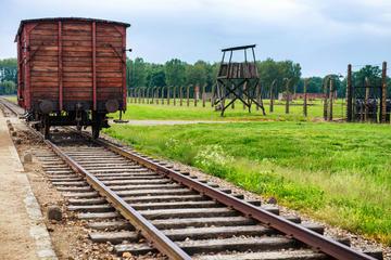 Excursão de ônibus de meio dia ao Museu de Auschwitz-Birkenau saindo...