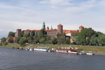 Tour panoramico privato della città