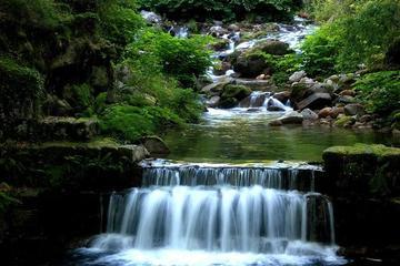 Excursão pelo Parque Nacional Peneda-Gerês