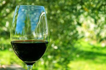 Viagem de um dia a Régua com comida, visita a uma vinícola e...