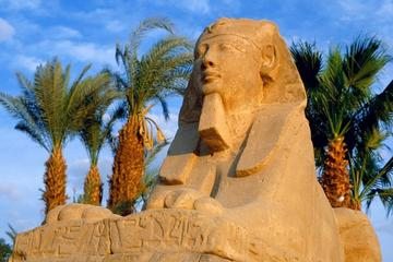 Egypt Best Holidays to Cairo Abu Simbel Aswan   Luxor 8 days 7 nights
