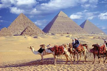 Tagesuasflug zu den Pyramiden von Gizeh Sphinx Sakkara und Memphis...